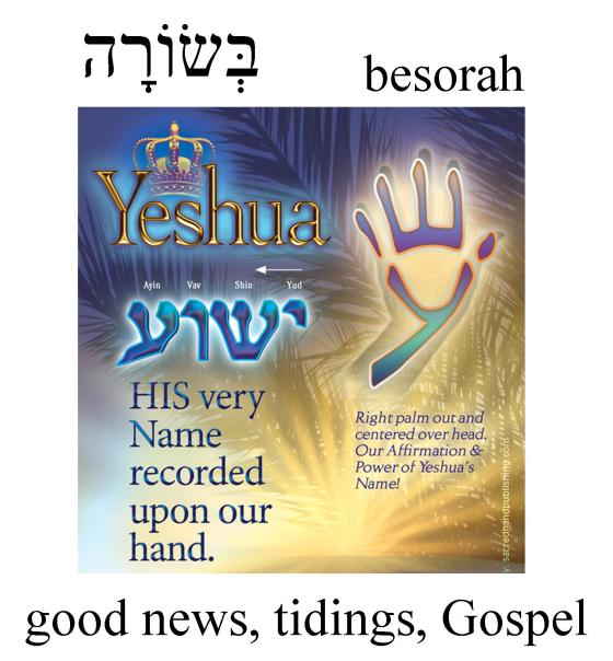 Hebrew Word of the Day (besorah)