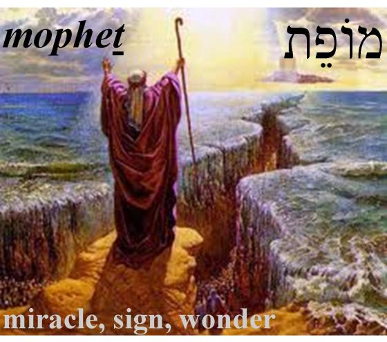 Hebrew Word of the Day (mopheth)