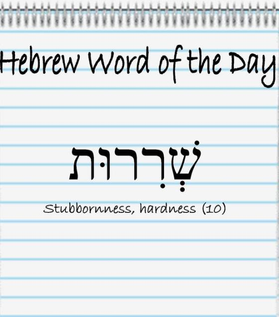 Hebrew Word of the Day (stubbornness)